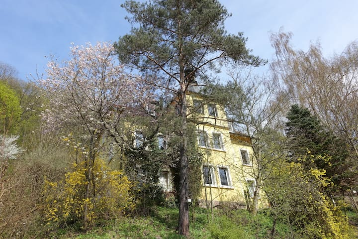 Sunny flat in Villa near castle and city center - Kulmbach - Willa