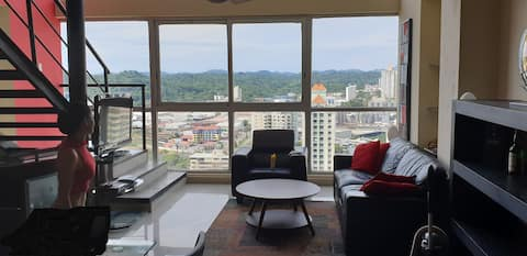 Fabulous Loft with view