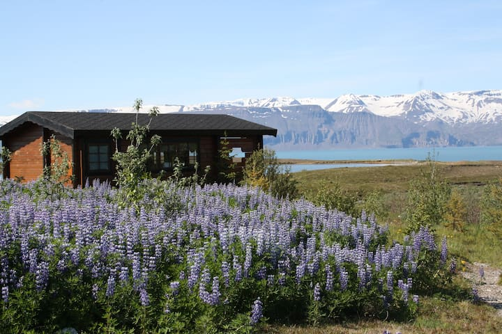 Tiny house cuddled into nature in Husavik.