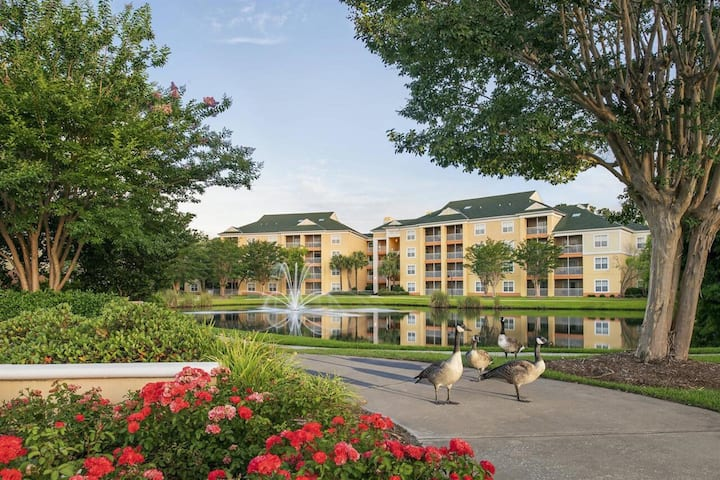 Sheraton Broadway Plantation 1 BR Mini Suite, SATURDAY Check-In