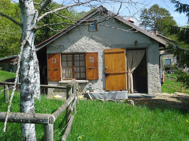 Maison pleine nature dans le vercors - Rencurel - Chalet