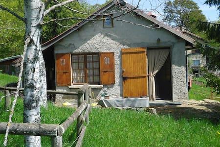 Maison pleine nature dans le vercors - Rencurel