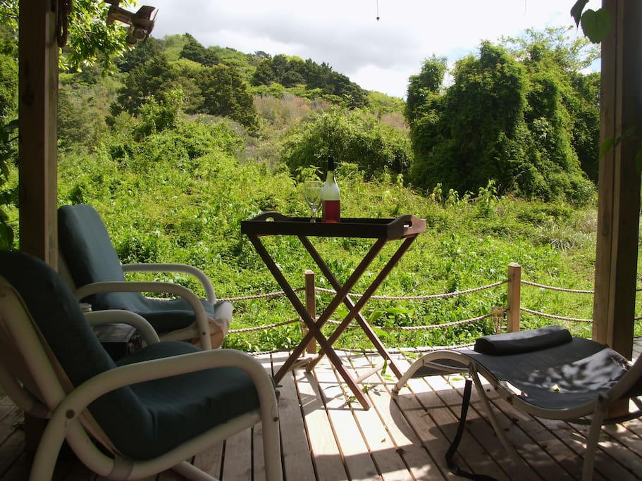 A Gazebo over looking the natural environment watching and listening to the birds