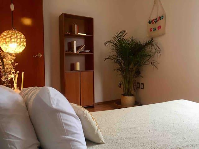 Cool room near Coyoacán