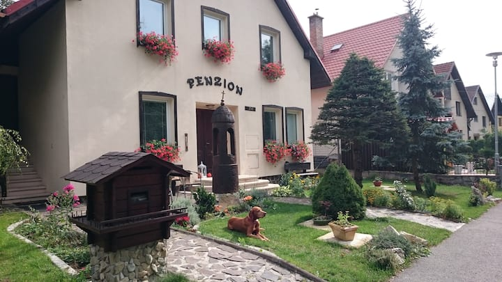 Mountain house close to ski park Kubinska hola