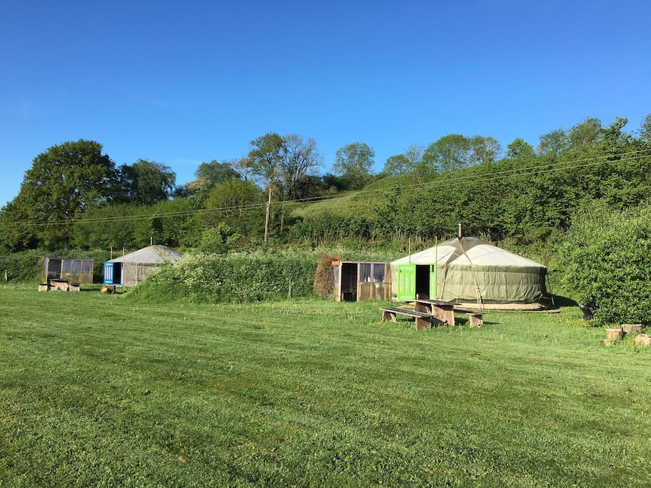 Woodpecker (right) and Badger yurts