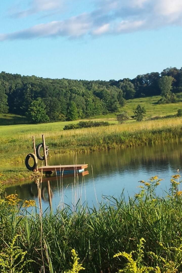 pond idyll