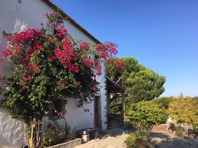 Casal da Serrana - Country House