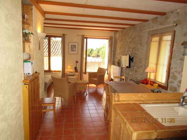 House in beautiful medieval village - Montalba-le-Château - House