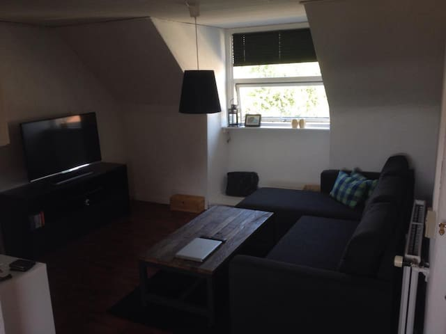 Hyggelig lejlighed med placering nær centrum - Odense - Flat