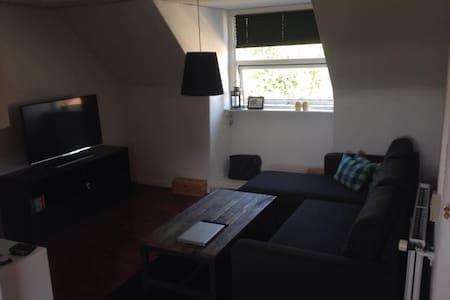 Hyggelig lejlighed med placering nær centrum - Оденсе - Квартира