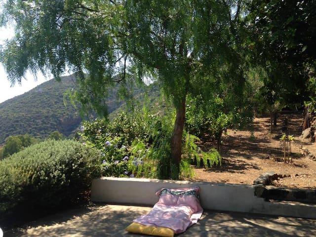 Casa con giardino- Filicudi - Filicudi Porto - House