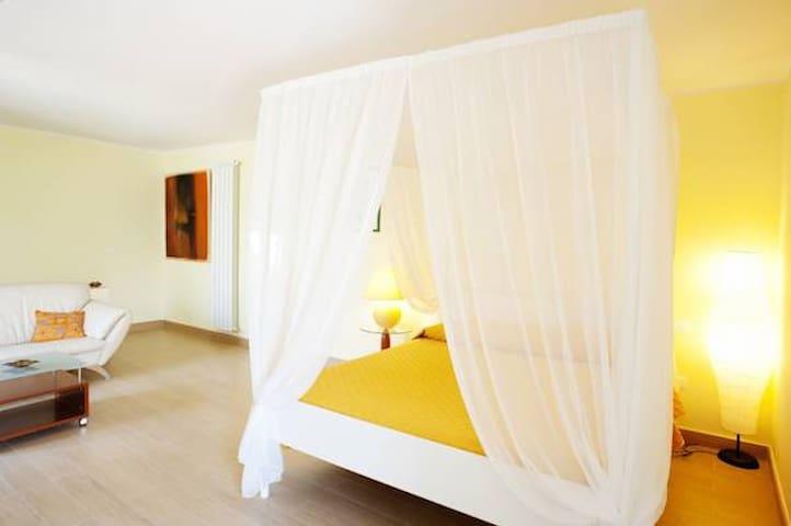 B&B IL BELVEDERE  ( camera + colazione + piscina)