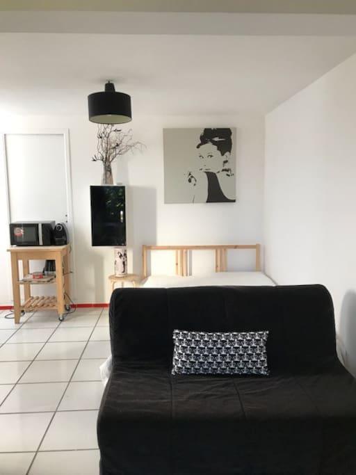 studio calme meubl en zone r sidentielle suites louer castelnau le lez languedoc. Black Bedroom Furniture Sets. Home Design Ideas