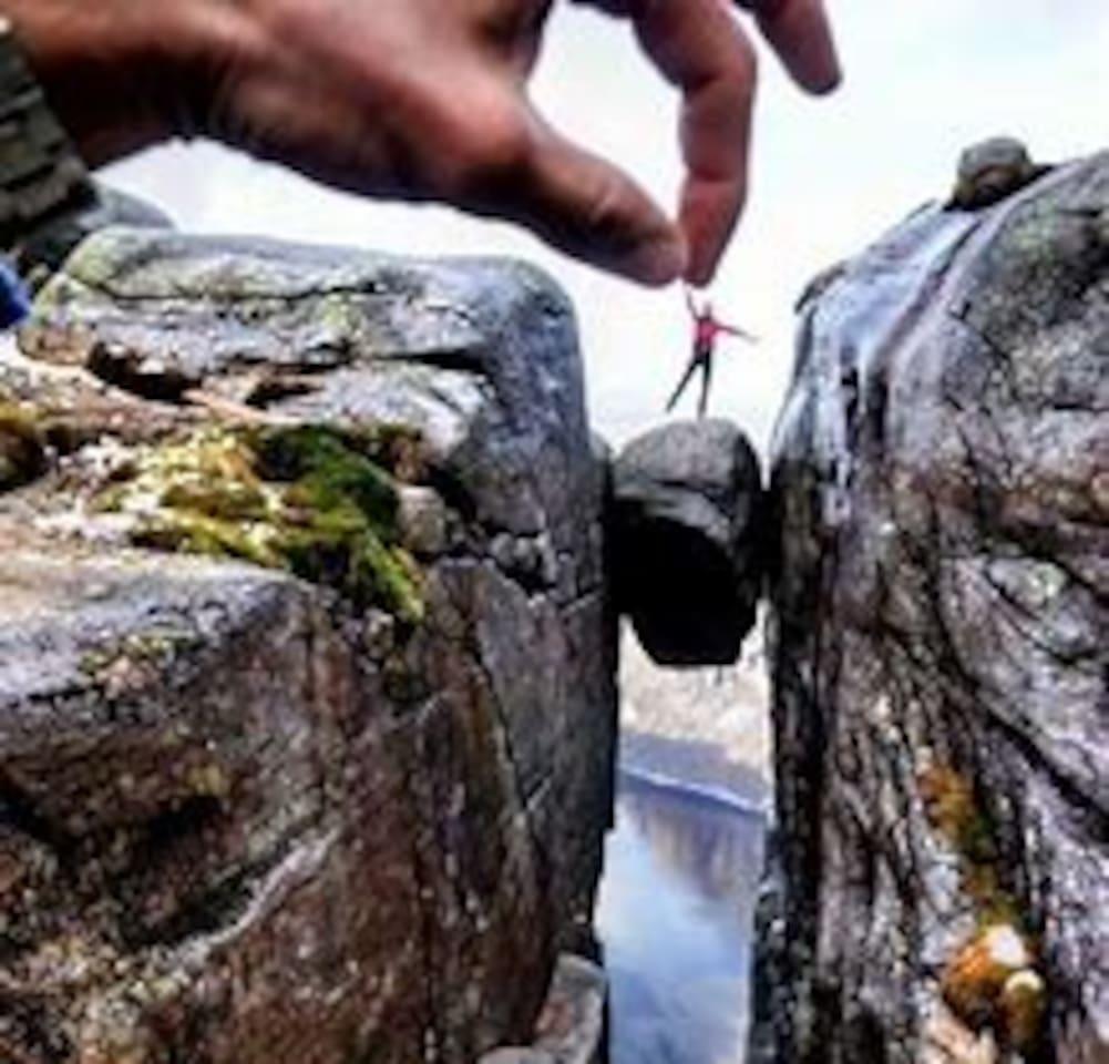Kjerag is a popular hikingdestination