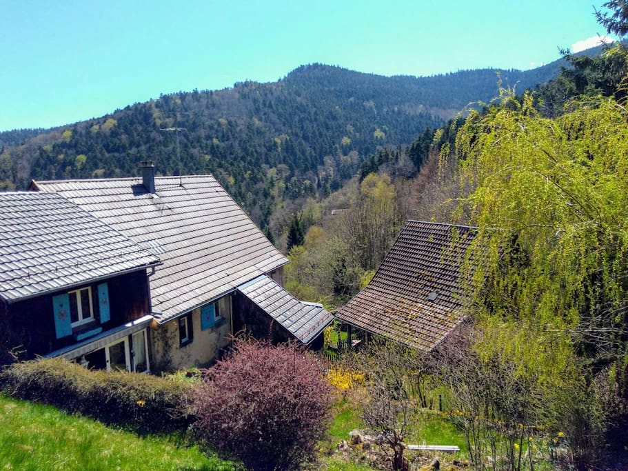 Charming studio chalets louer murbach grand est france for Chambre hote murbach
