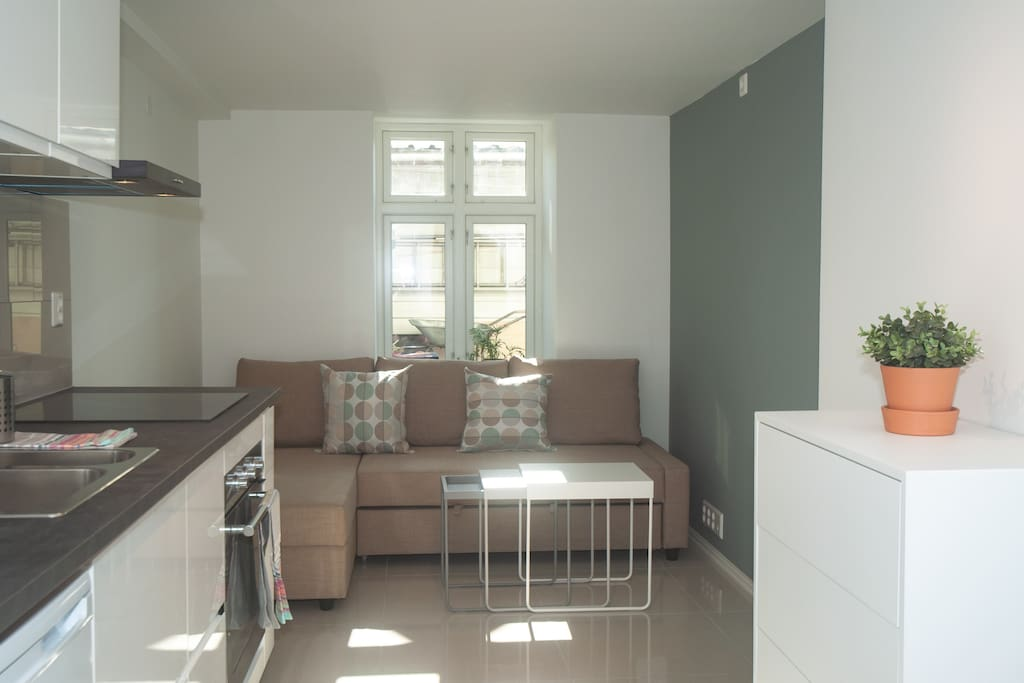 The entire apartment has tiled floors and floor heating trough out.  There is a separate sleeping alcove with a bed ( 1 person) and the pull out sofa bed in the living room ( 2 persons).