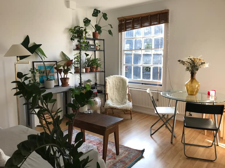 Super Sunny East London Flat