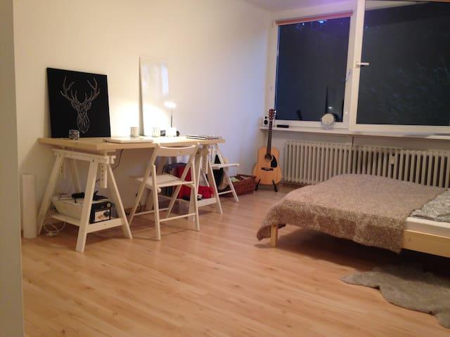 Bright, friendly one-room apartment - Mannheim - Apto. en complejo residencial