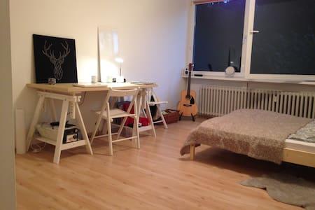 Bright, friendly one-room apartment - Mannheim - Osakehuoneisto