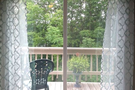 50 FEET FROM THE SKI RESORT! Walk to the slopes! - Beech Mountain