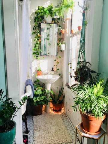 Jungle bathroom (WC is separate)