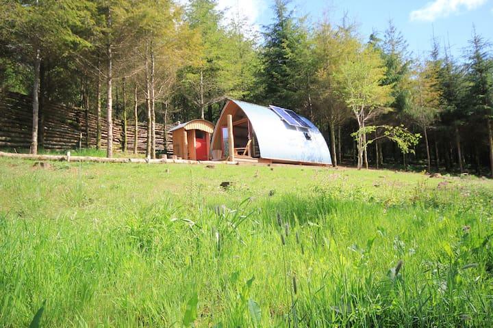 Amazing, off-grid cabin in Devon woodland