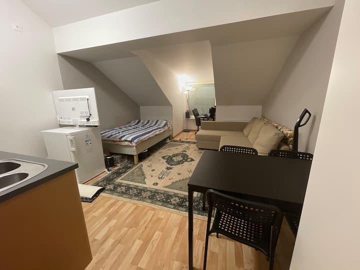 Cozy one room apartment in central Jönköping