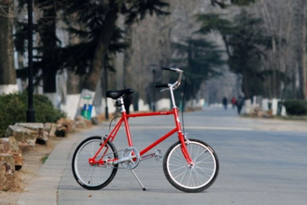 Compact fixie. Red.