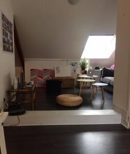 Appartement T1 BIS Nantes centre/ Guist'hau - Nantes