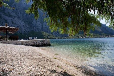 Apartmann close to sea - Kotor