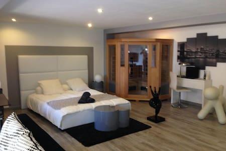 Maison proche d'Albi, piscine, spa - Castelnau de Lévis