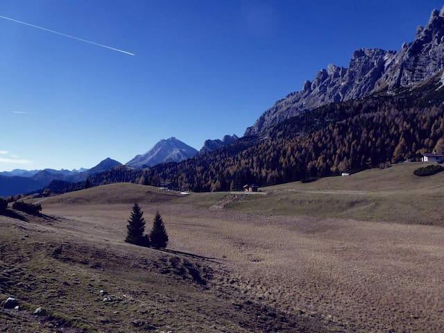 Accogliente appartamento nel cuore delle Dolomiti - Lozzo di Cadore - Flat