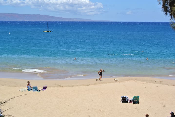Maui Luxury 2 Bedroom at the Beach Entire Space