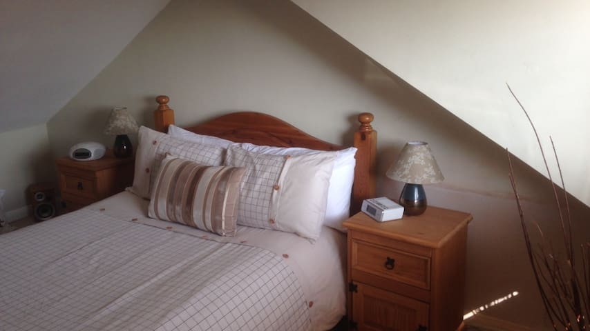 Charming Victorian home in London - London - Bed & Breakfast