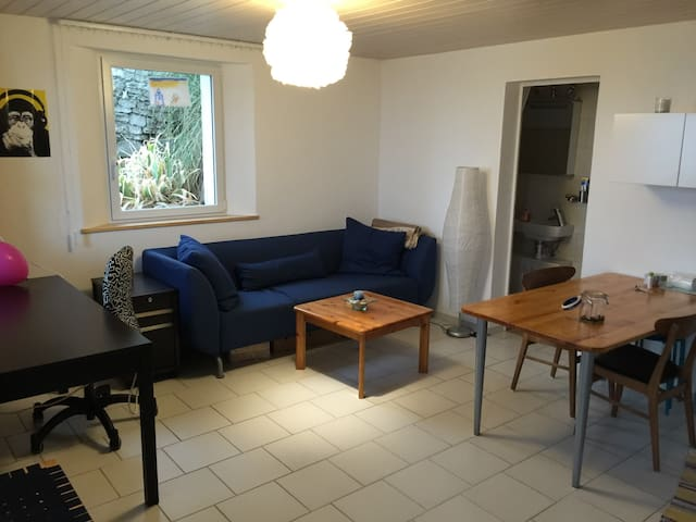 Nice apartment in Biel/Bienne - Biel - Appartement