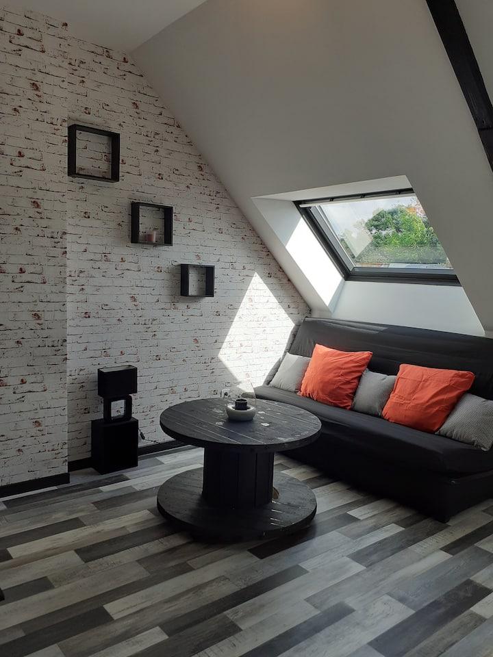 appartement le loft