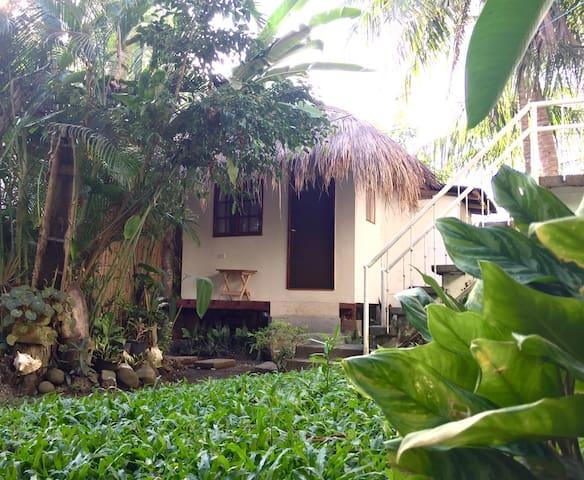 Tropical Garden Villa on Seaside Property - Tagbilaran City