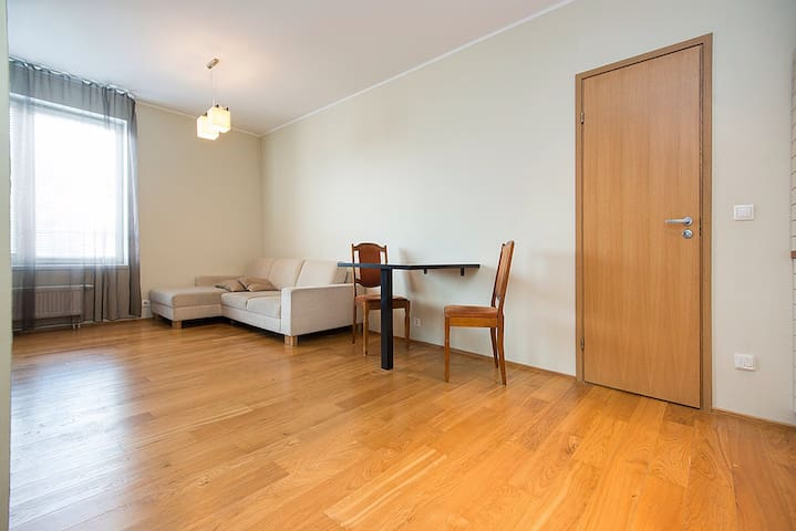 40sqm well equipped, cozy - Tallinn - Appartement