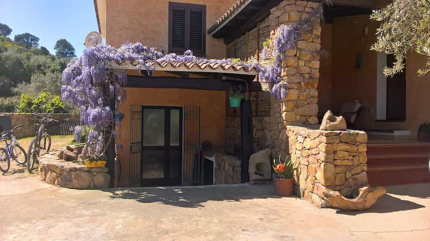 casa relax in economy - Sos Alinos - Apartment
