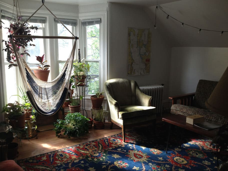 Our living room is full of plants and warm natural light. The windows overlook the street.