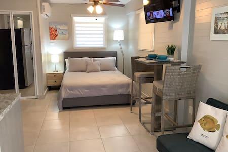 Caribbean Lot 21 Studio at La Parguera