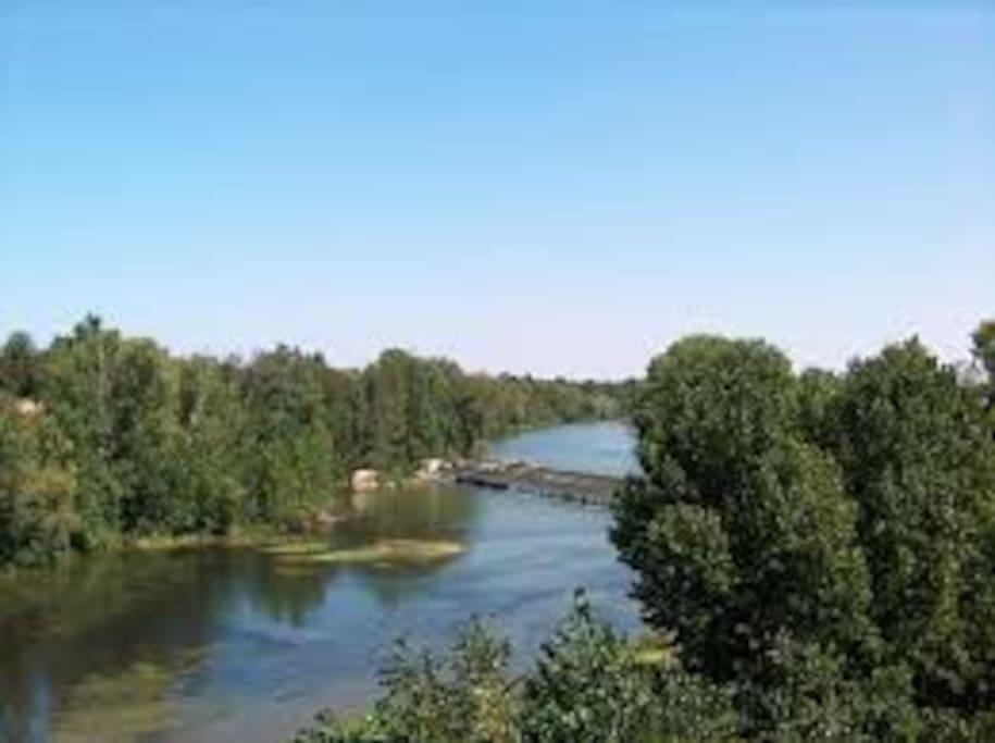 Juste en dessous du pont suspendu, aux pieds du Castela, les berges de l'Agout sont accessibles à 5 minutes.
