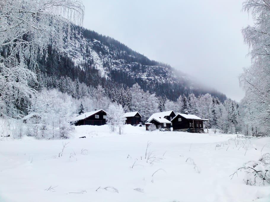 Viken Gård i vinterskrud!