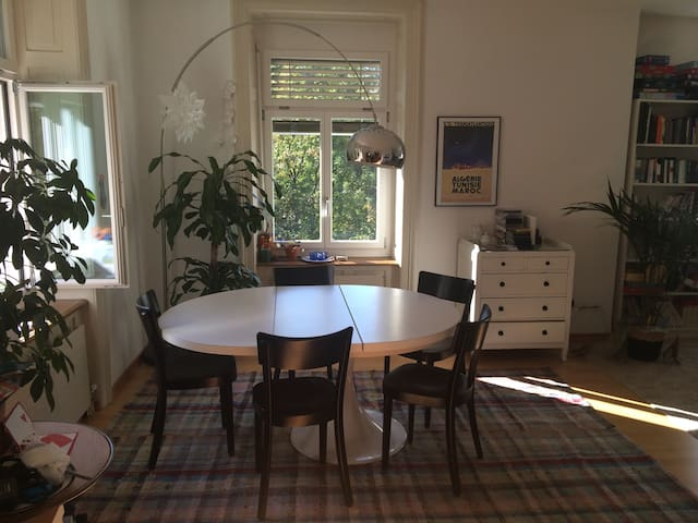 perfectly situated, beautiful, large appartment - Ennetbaden - Apartment
