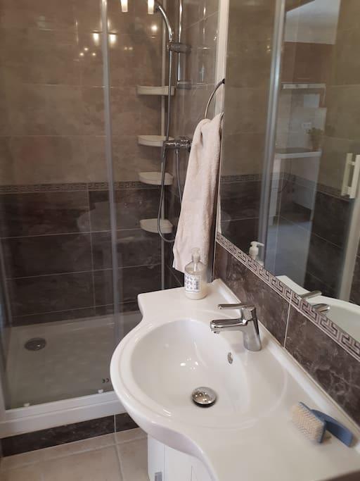 salle de douche et lavabo