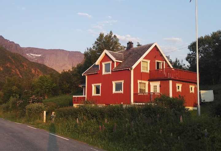 House in wonderful Steigen with 7 beds