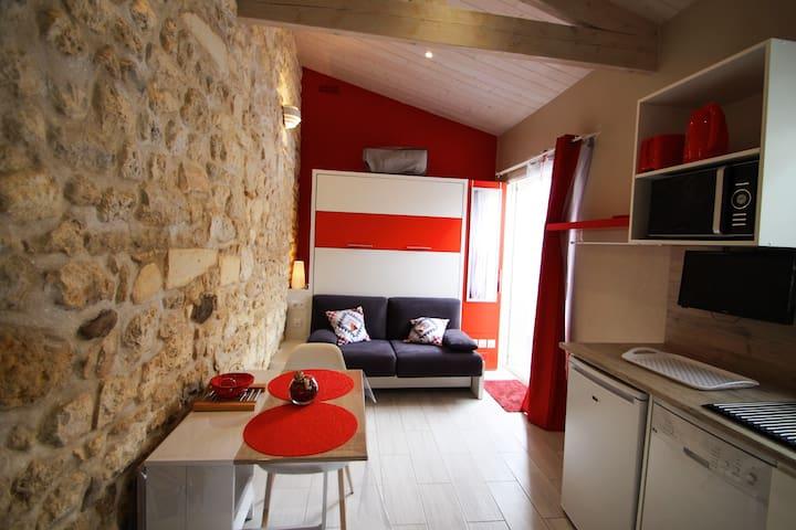 Charmant studio 20m² de plain-pied avec jardin  2*