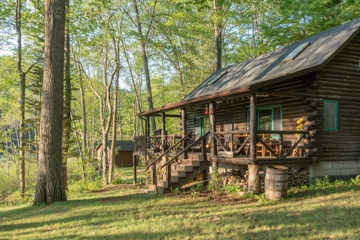 Log Cabin on 3 Acres of Private Lakefront