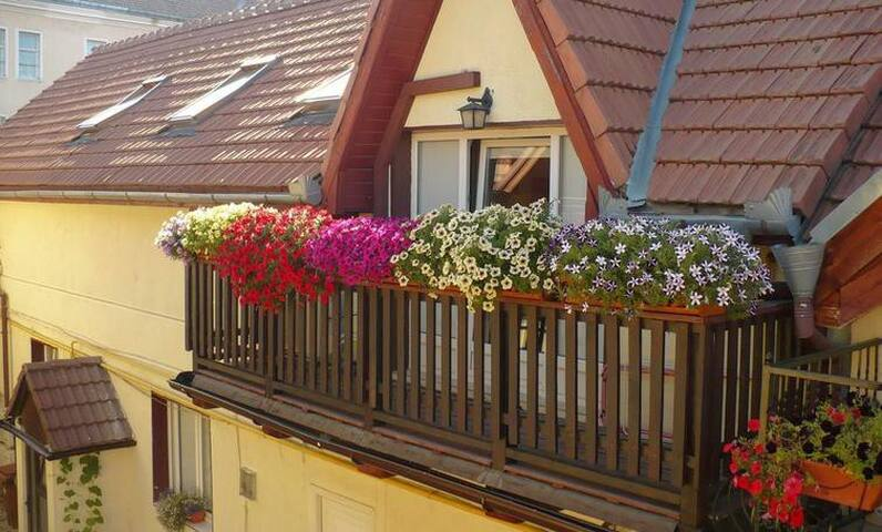 Entire house, your perfect vacation - Brașov - Huis